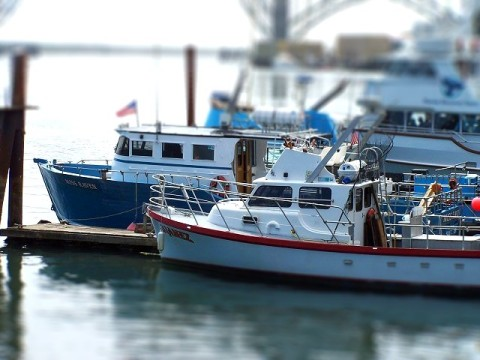 toyboats